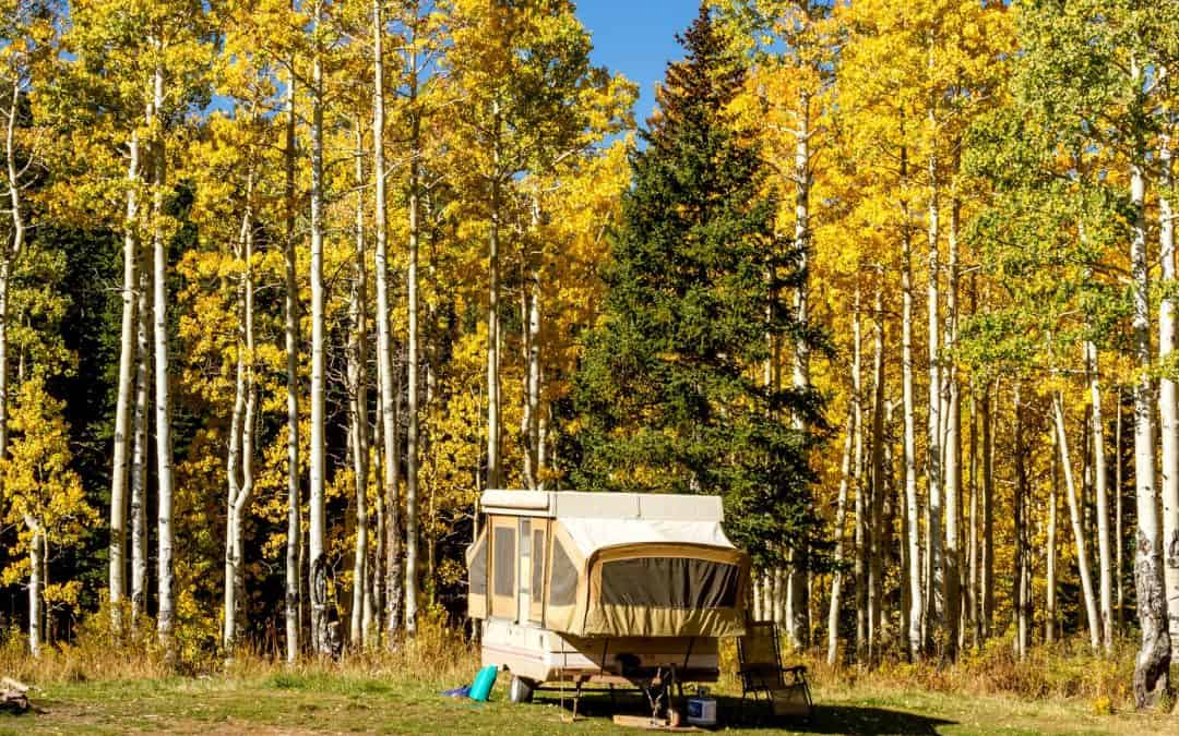 Pop Up Trailer Buyer's Guide: Know Before You Buy!