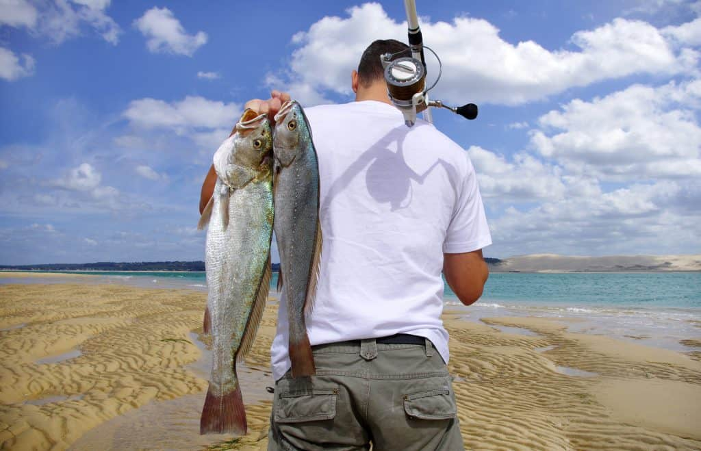 How Much Does A California Fishing License Cost Outdoor Troop