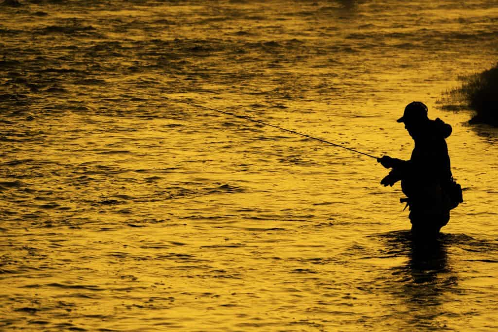Fly Fishing for Bass: 21 Tips That Help Me Catch More