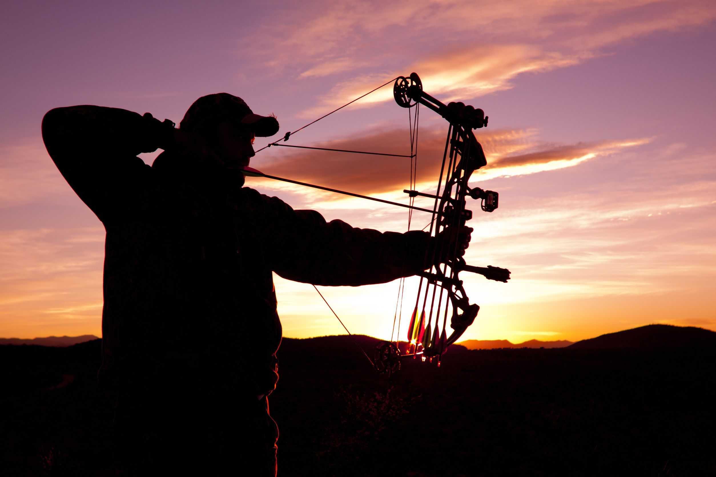 12 Best Rangefinders for Archery