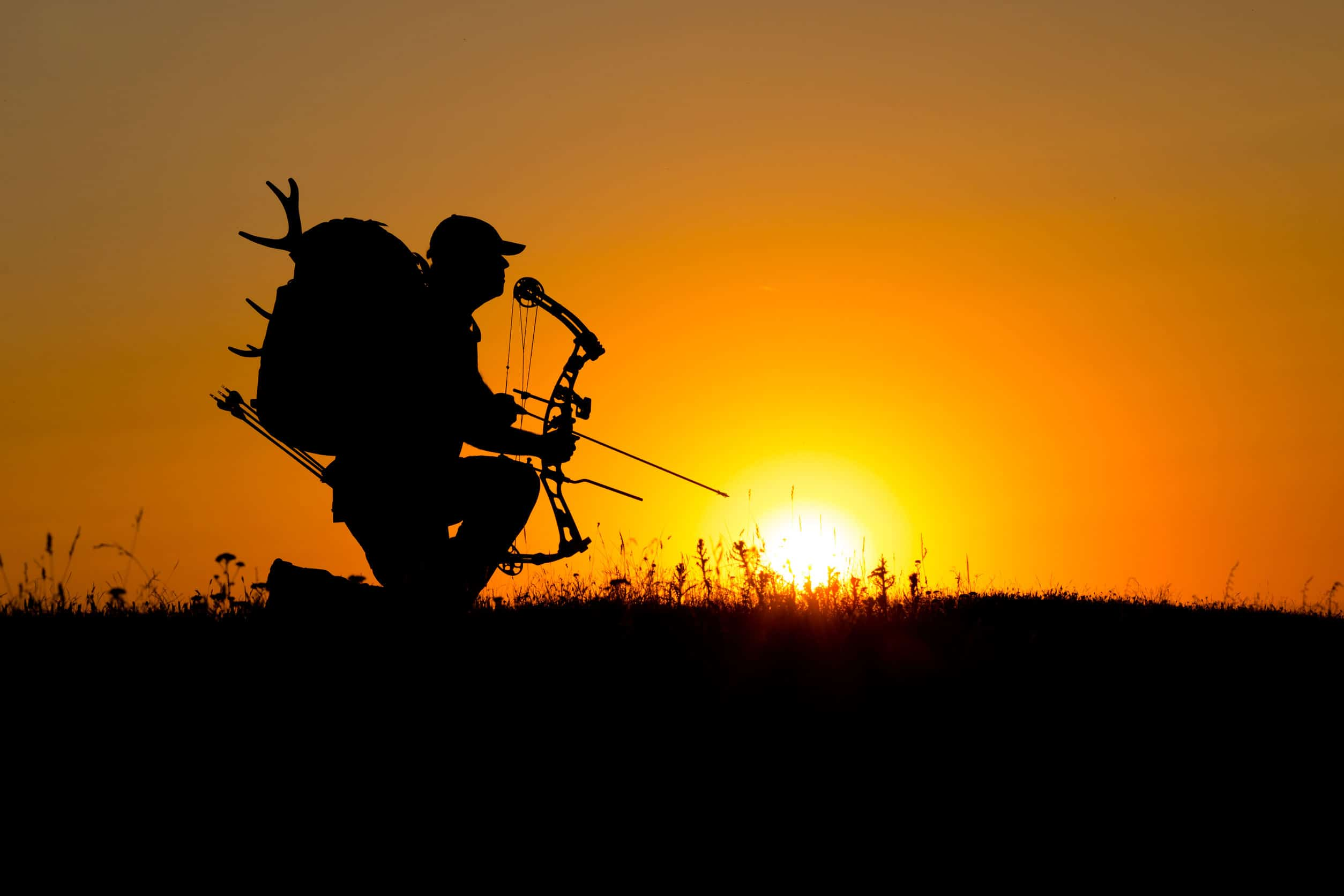 The Best Back Tension Archery Releases for Hunting