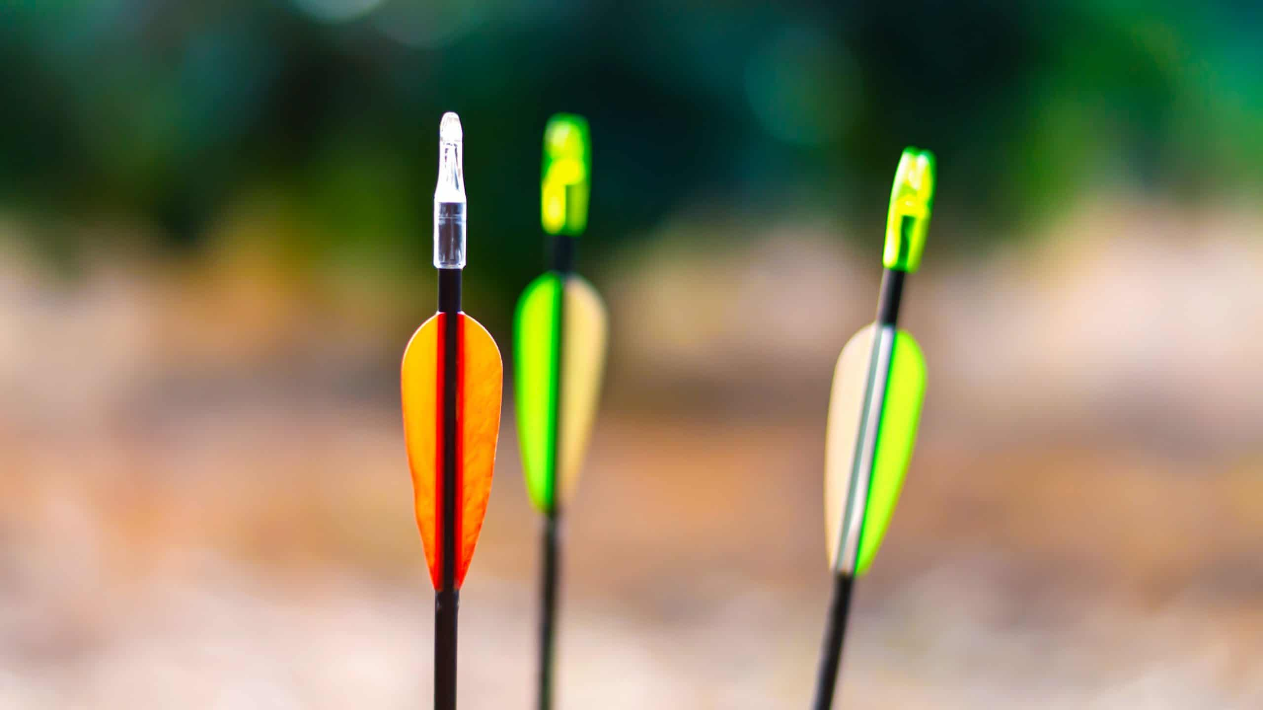 10 Best Carbon Arrows for Hunting – Buyer's Guide