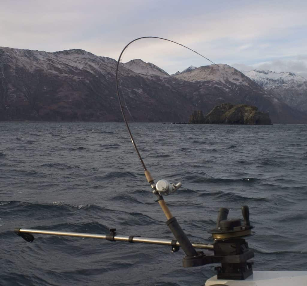 5 Best Kokanee Rods for Use with a Downrigger – Outdoor Troop