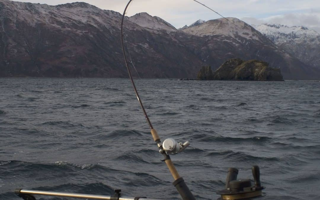 5 Best Kokanee Rods for Use with a Downrigger