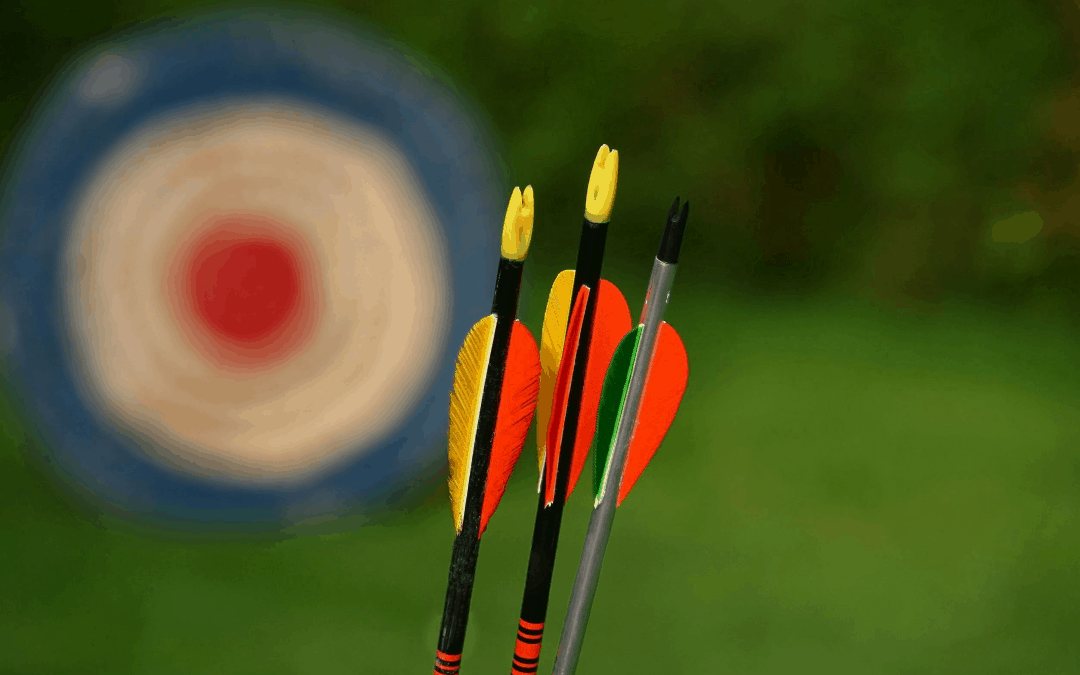 7 Super Cheap Arrows – Best Arrows for Targets and Hunting