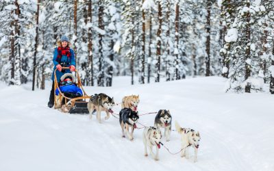 What to Wear When Going Dog Sledding to be Perfectly Comfy