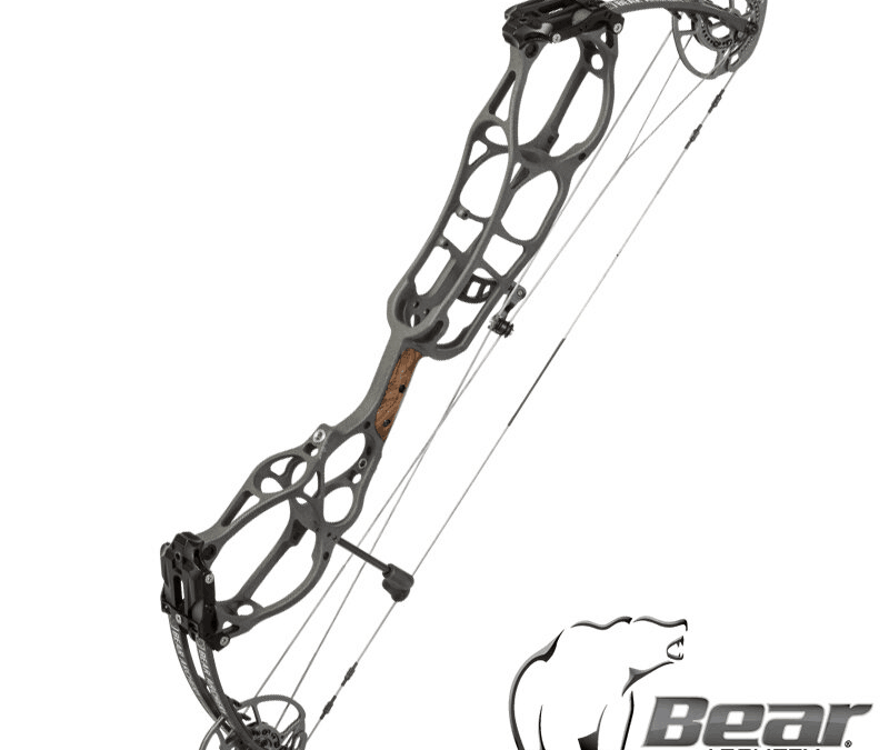 Bear vs. Diamond Bows: 11 Pros and Cons to Help You Decide
