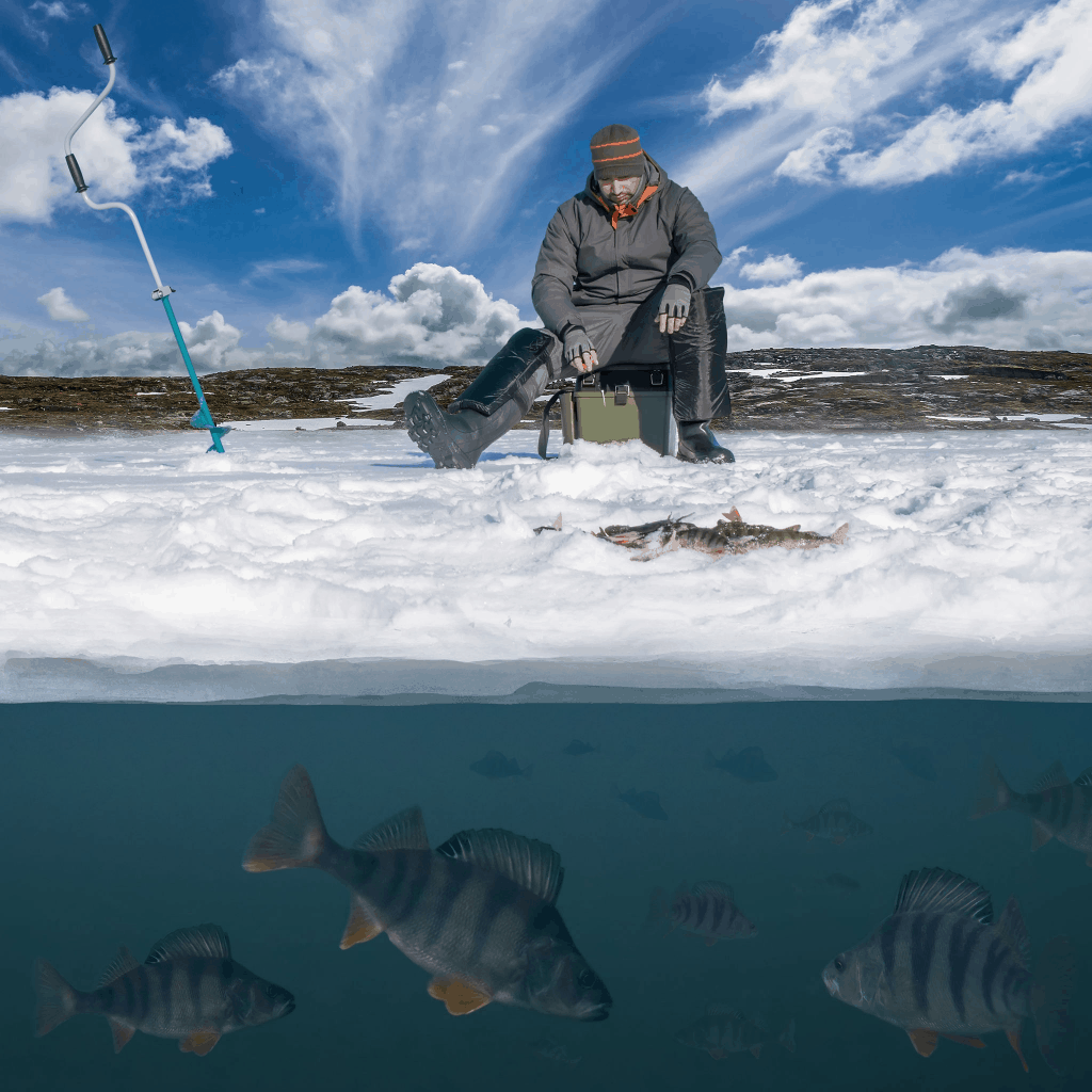 Ice Fishing 101: Ultimate Beginner's Guide With All You Need to know –  Outdoor Troop
