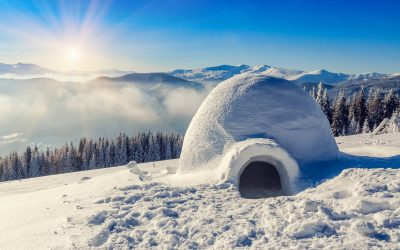 Can You Make an Igloo with Powdery Snow?